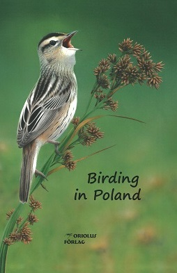 Birding in Poland vattens�ngare